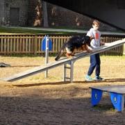 balansoar-agilitate-agy100c