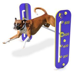 agilitate canina, echipament dresaj canin, echipamente dresaj, fitness pentru caini